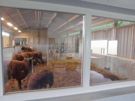 kantine vee uitzicht (1).JPG