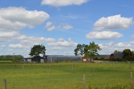 boerderij vanaf ventweg
