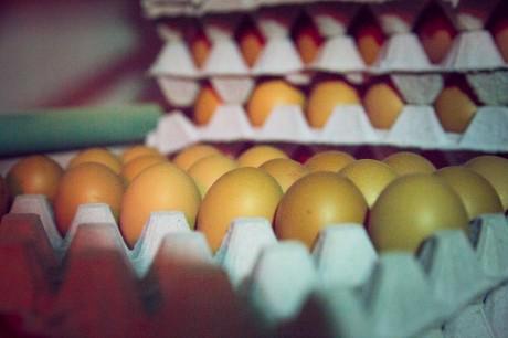 eieren.jpg